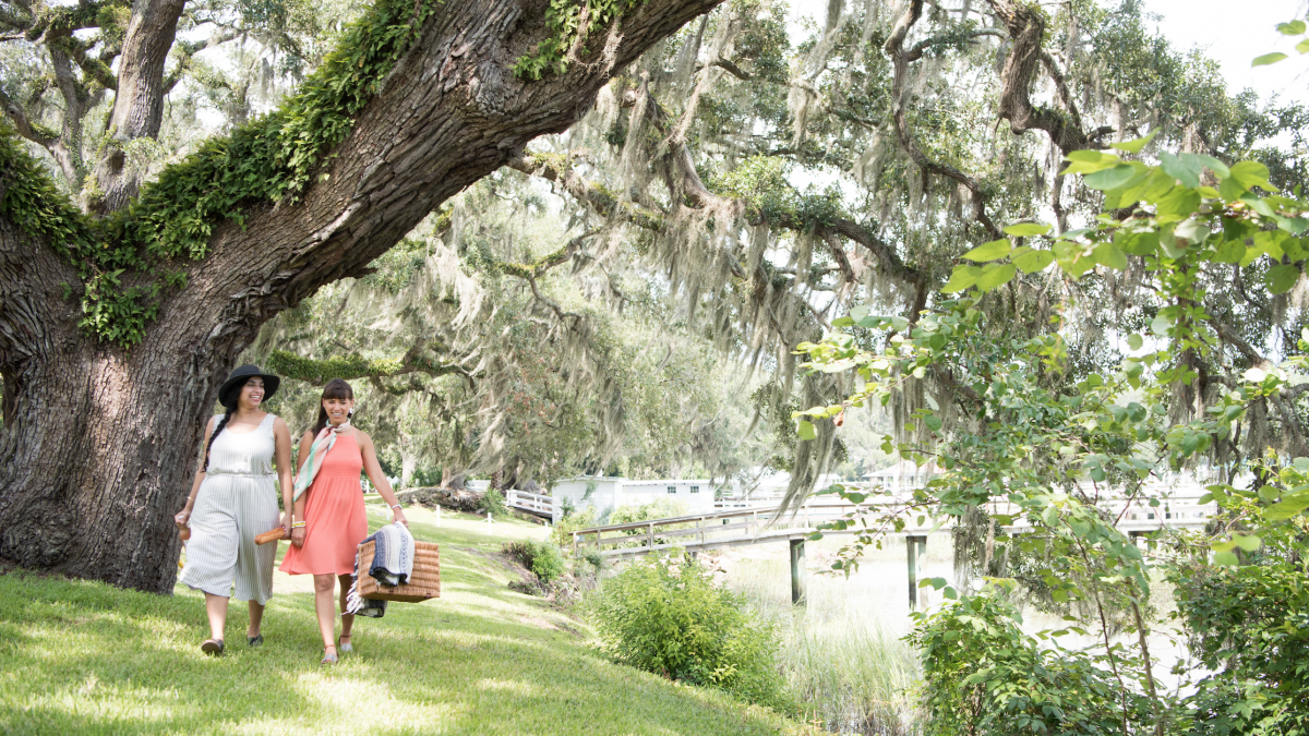 5 Things To Do In Savannah S Moon River District Visit