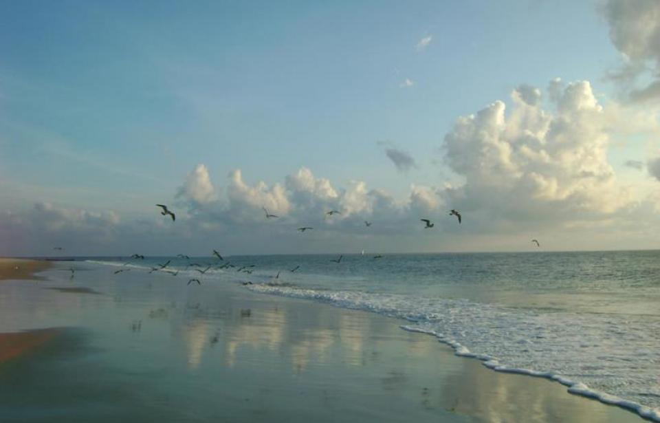 Tybee Time Vacation Rentals
