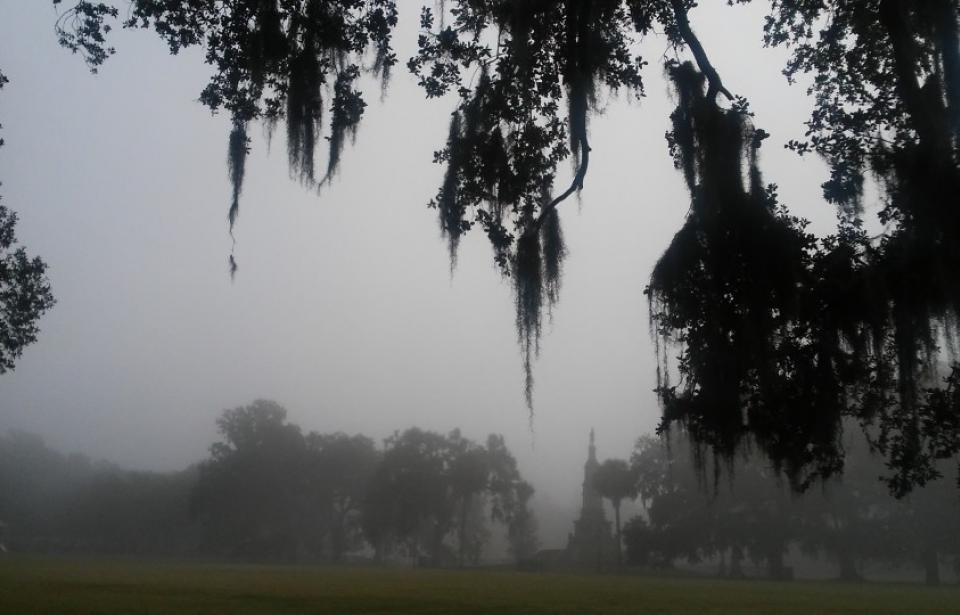 Historic Forsyth Park and Victorian Experience
