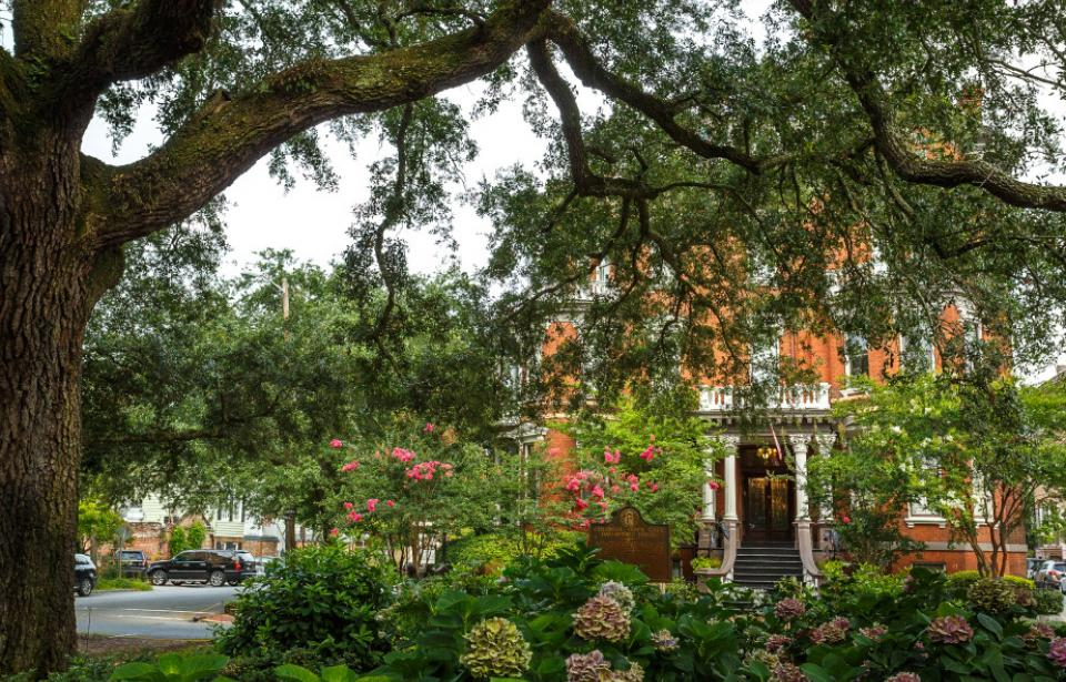 The Kehoe House - Live Oaks and the flowers of Columbia Square make up our front yard.