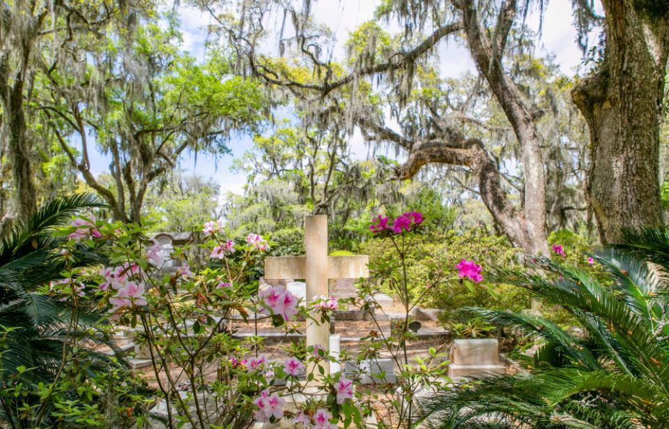 Bonaventure Cemetery in the spring