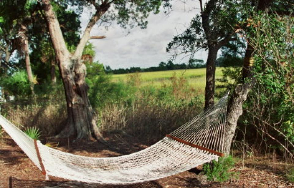 Hammock on Page Island - Relaxing in a hammock is just one of the options on an Ultimate Day with Outside
