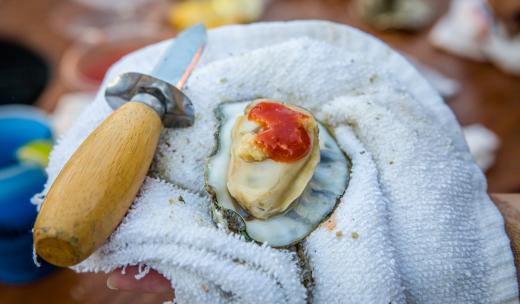 Savannah Oyster Roast