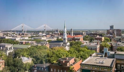 Savannah aerial shot